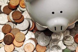 Piggy Cdn Money
