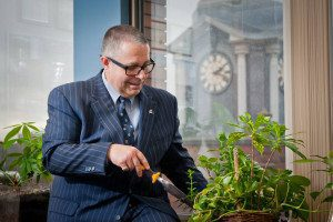 Helping Brampton Grow